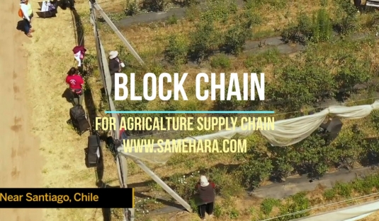 کاربرد بلاک چین در صنعت کشاورزی